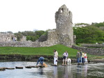 SX05758 Dog slipped off stepping stones at Ogmore Castle.jpg